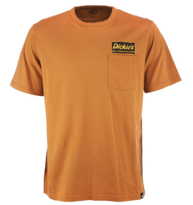 CAMISETA DICKIES FRANKLIN PARK BROWN DUCK